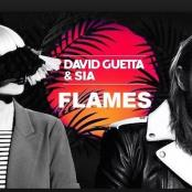 DAVID GUETTA FEAT SIA - FLAMES